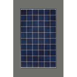 Pannelli solari 260W GreenTriplex